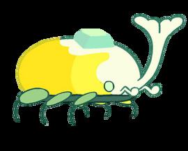 Heaven Beetles