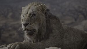 Lion King 2019 Screenshot 1882