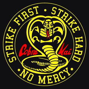 Cobra-kai-t-shirt-textual-tees