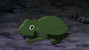 Eruka Frog's frog form
