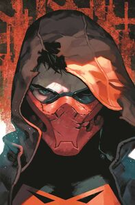 Red Hood and the Outlaws Vol 2 36 Textless Variant
