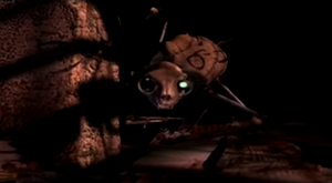Cat Beast 2005