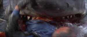 Jaws-movie-screencaps com-13967