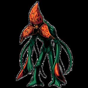 Plant 43 (Clan Master)