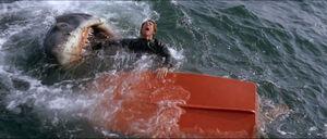 Jaws-movie-screencaps com-7384