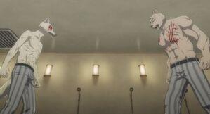 Legoshi and Riz anime 25