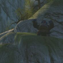 Kung Fu Panda Video Game Great Gorilla Pounds Chest.jpg