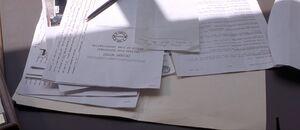 Swayzak's fake documents