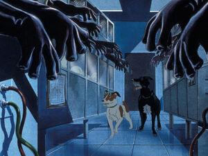 The-Plague-Dogs-1982-movie-scene