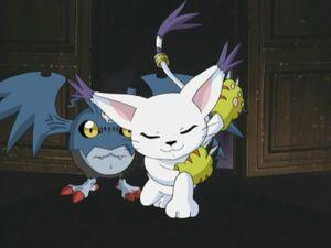 DemiDevimon and Gatomon
