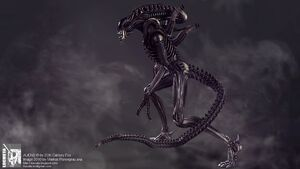 Movie-aliens-wallpapers-images-wallpaper