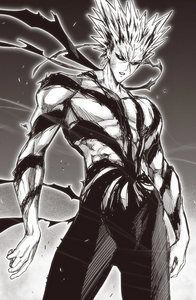 Garou Manga Profile