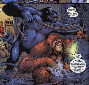 Super-Apes 616