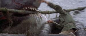 Jaws2-movie-screencaps com-13166
