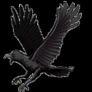 Crow (Clan Master)