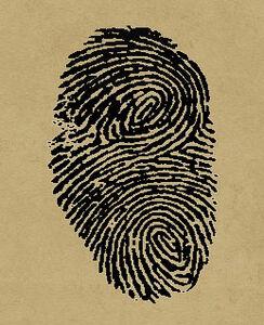 Fingerprints7
