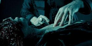Viktor's-corpse