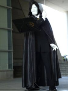 Black Cloaked Icerondo