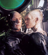 Picard and borg queen