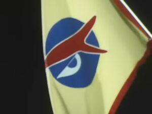 Neo-Human flag