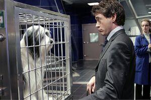 Dr. Kozak holding DogDave hostage