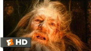 The Hobbit The Desolation of Smaug - Fighting the Darkness Scene (5 10) Movieclips