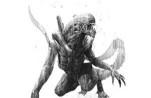 Alien Sketch3