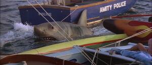 Jaws2-movie-screencaps com-12326