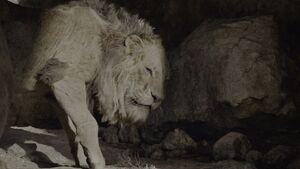 Lion King 2019 Screenshot 0218
