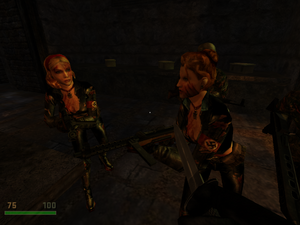 RTCW - Wounded Elite Guards in Castle Wolfenstein (1)