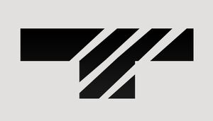 TYGER Security Icon