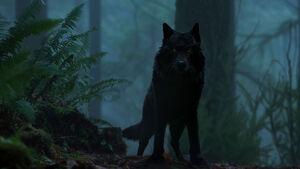 Hellhound-xfiles