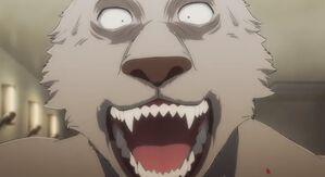 Riz anime 52