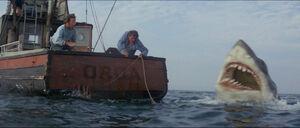 Jaws-movie-screencaps com-11621