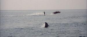 Jaws2-movie-screencaps com-2173