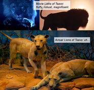 GhostDarkness lions