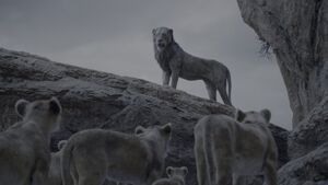 Lion King 2019 Screenshot 1492