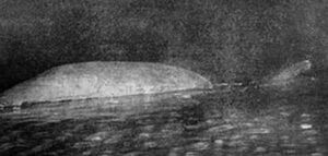 Loch-Ness-Monster-Peter-OC
