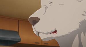 Riz anime 39