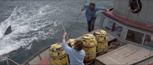 Jaws-movie-screencaps com-11778