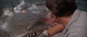 Jaws-movie-screencaps com-9601