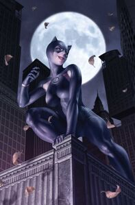 Catwoman Vol 5 24 Textless Variant