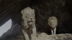 Lion King 2019 Screenshot 0241