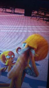 Octopus touches eye