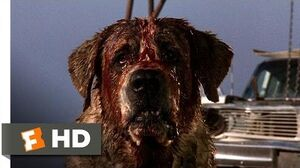 8) Movie CLIP - Donna Is Bitten (1983) HD