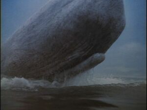Moby Dick in the 1956 adaptation