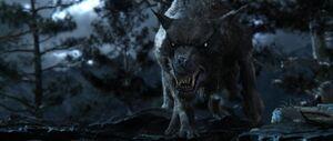 Warg The Hobbit