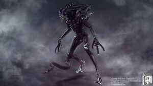 ALIENS Warrior NT HP 03 sm