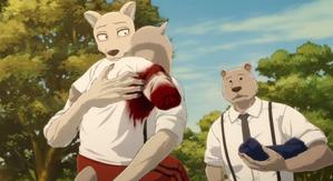 Legoshi and Riz anime 02