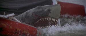 Jaws2-movie-screencaps com-12597